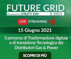 Future Grid Day 2021 - Il percorso di Trasformazione digitale e di transizione Tecnologica dei Distributori Gas & Power