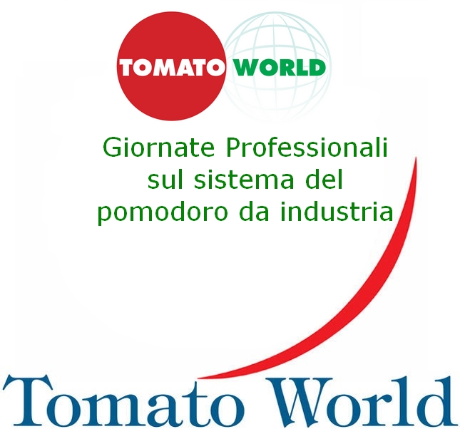 Tomato World 2020