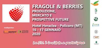 Fragole & berries: produzione, mercato e prospettive future