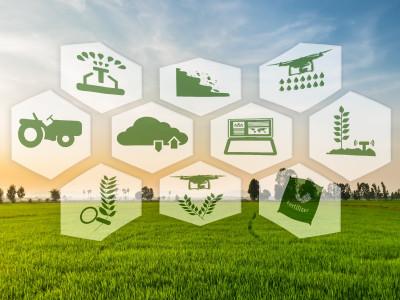 I green claim: opportunità e limiti per l'industria alimentare